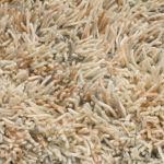Vloerkleed Revan beige/grijs 21