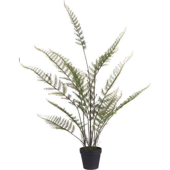 Kunstplant Varen 91cm hoog