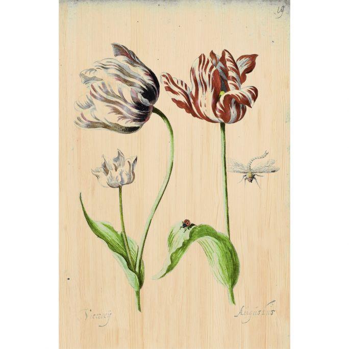 Wanddecoratie Botanical Stories 017 98x148cm