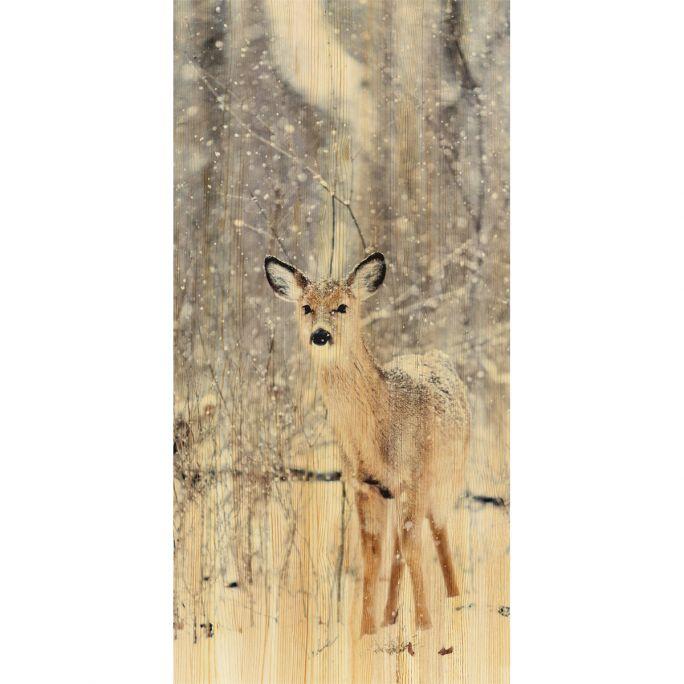 Wanddecoratie European Wildlife 007 48x98cm