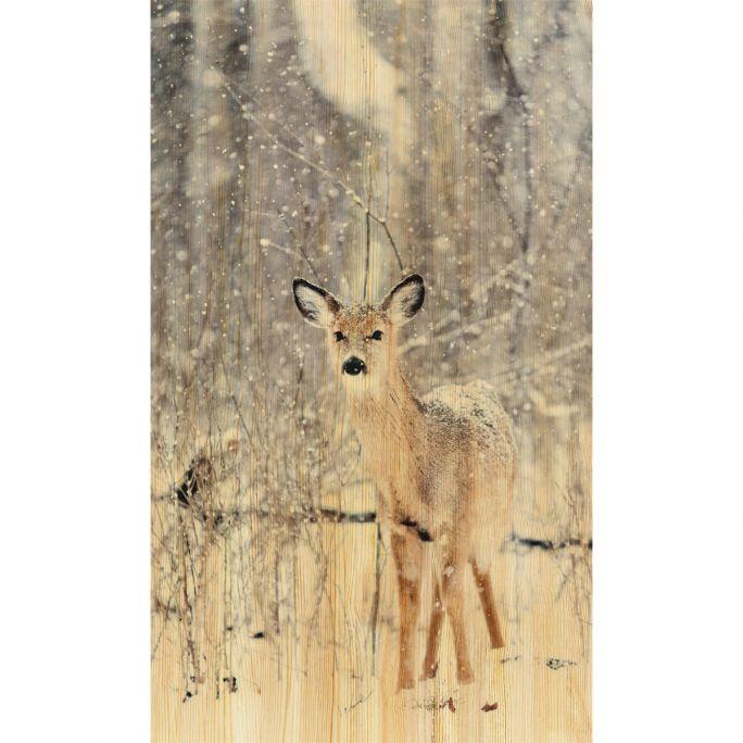 Wanddecoratie European Wildlife 007 70x118cm