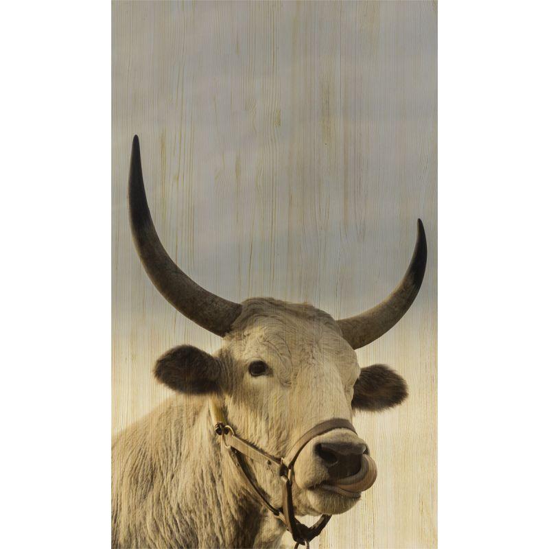 Wanddecoratie European Wildlife 011 70x118cm