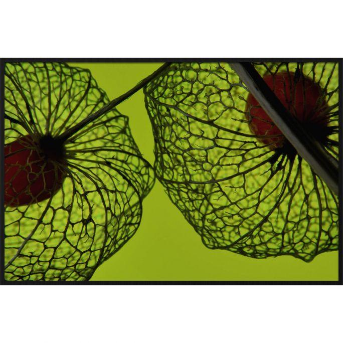 Wanddecoratie Botanical Stories 008 148x98cm