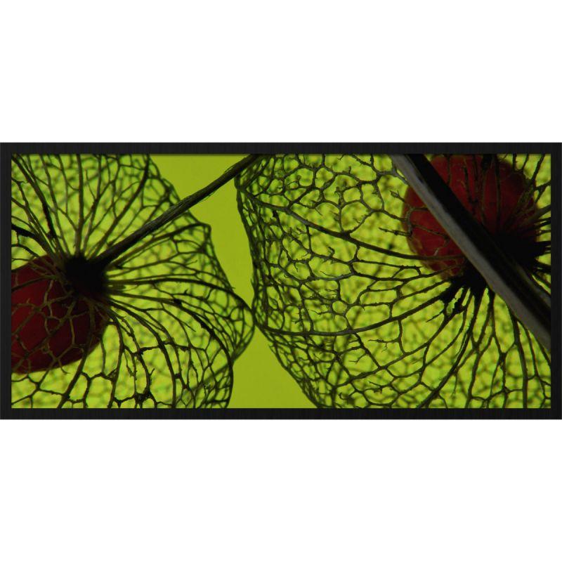 Wanddecoratie Botanical Stories 008 98x48cm