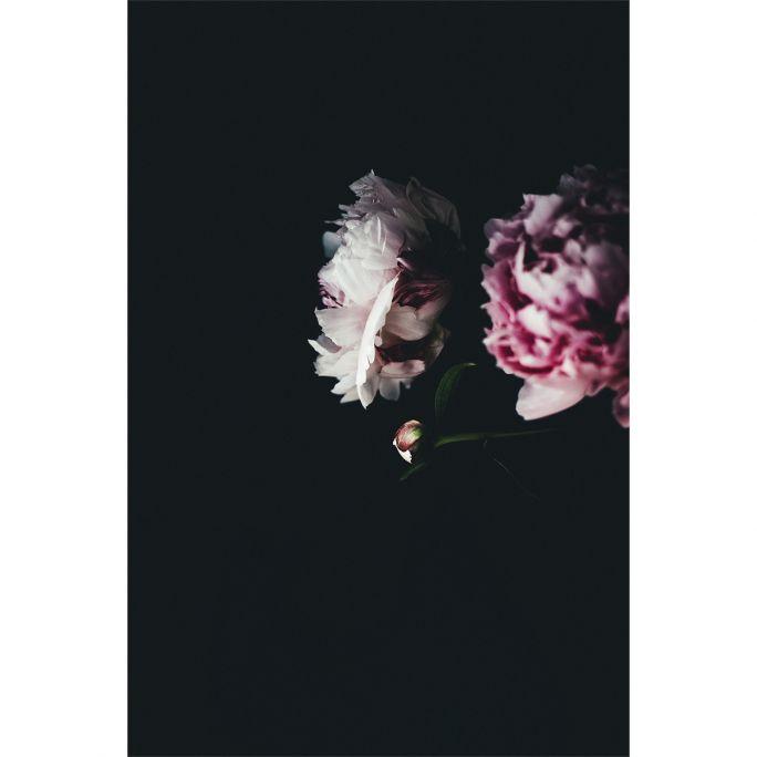 Wanddecoratie Botanical Stories 009 98x148cm