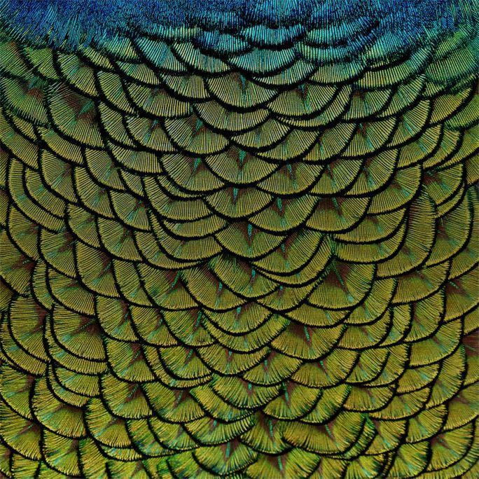 Wanddecoratie Wonderful Life 011 74x74cm