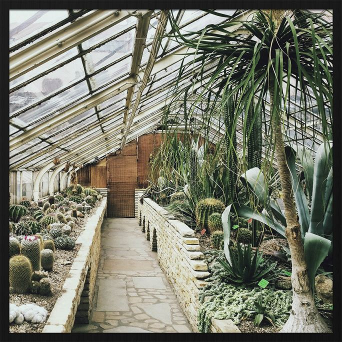 Wanddecoratie Botanical Stories 013 74x74cm