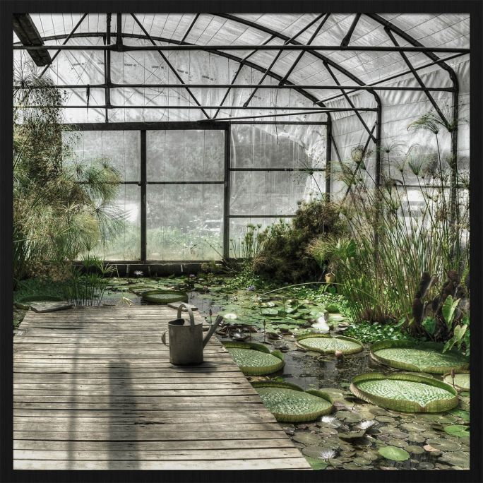 Wanddecoratie Botanical Stories 014 74x74cm