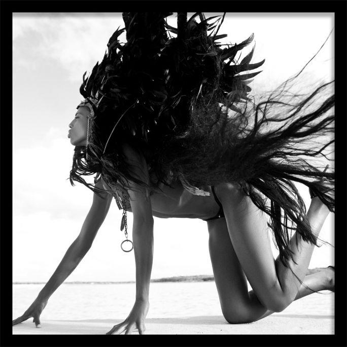 Wanddecoratie Black Swan 100x100cmmet zwarte baklijst