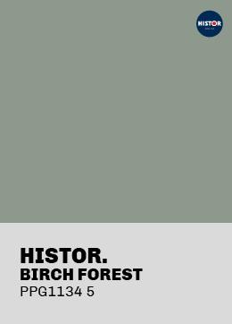 Histor Birch Forrest PPG11345