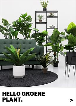 accessoires-kamerplanten-in-plantenstandaard