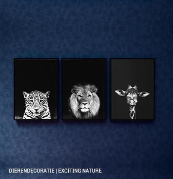 Decoratie met dieren #kleur #trend #woonaccessoires #dieren #Trendhopper #interieur #inspiratie